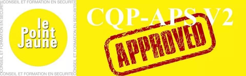 CQP APS le point jaune